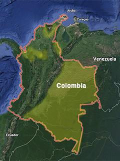 Guaamaya rojiverde