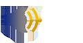 Coeligena torquata